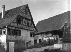 Das Christ'sche Haus und die Scheuer des so genannten »Klosterhofs«